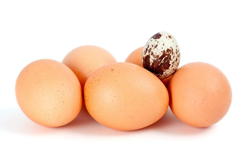 Как правильно сварить яйца. Наука выеденного яйца